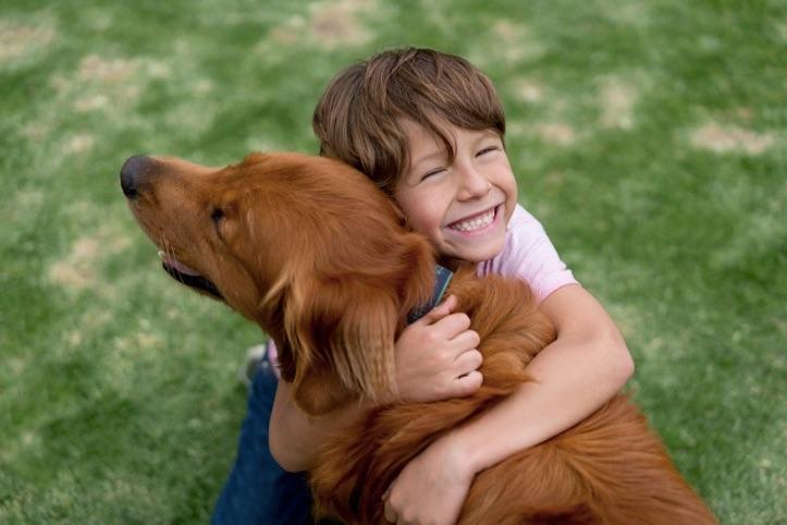 Haftanın sosyal sorumluluk uygulaması: S.O.S Pets
