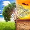 İklim değişikliği mücadelesi masaya yatırılıyor