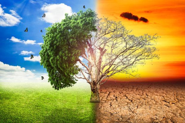 Enerjide iklim değişikliği projesi başladı