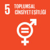 Sürdürülebilir Kalkınma Hedefi #5: Toplumsal Cinsiyet Eşitliği
