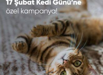 Aksigorta'dan Kedi Günü'ne özel kampanya
