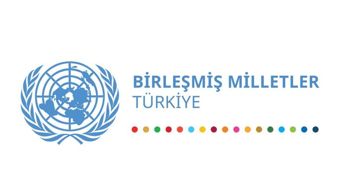 Birleşmiş Milletler Türkiye Ülke Ekibi kadın cinayetlerini kınıyor