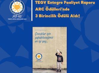 TEGV, üç kategoride Altın Ödüle layık görüldü
