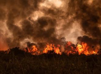 Dünya'nın en büyük sulak alanı yanıyor